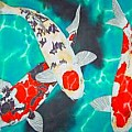 Koi Fish - Art Group